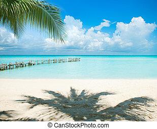 vacances antilles, soleil, concept., paumes, island., tourisme