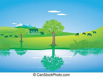 vaches, lac, paysage