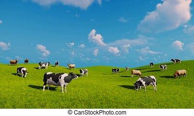 vaches, ouvert, paître, vert, prés