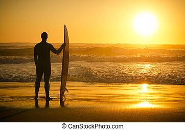 vagues, surfeur, regarder