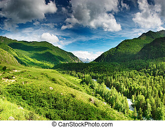 vallée montagne