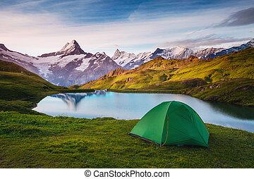 vallée, suisse, emplacement, alpes, alpin, grindelwald., sunlight., bachalpsee, incandescent