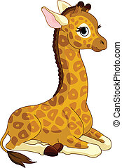 veau girafe