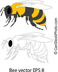 vecteur, abeille