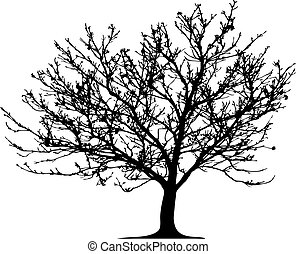 vecteur, arbre