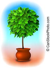 vecteur, arbre., topiary