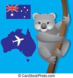 vecteur, arrière-plan., avion, image, koala, branche, isolé, australie, drapeau australien, animal