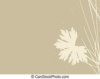 vecteur, arrière-plan brun, illustration, aromate