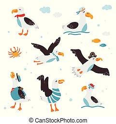 vecteur, blanc, albatros, images, arrière-plan., rigolote, isolé, illustration, bébé, ensemble