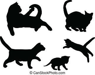 vecteur, -, collection, chat