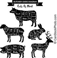 vecteur, coupures, diagram., guide, viande, charcutier, illustrations.