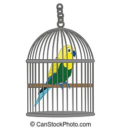 vecteur, dessin animé, cage, illustration, perroquet