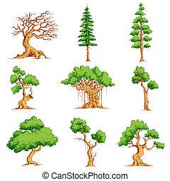 vecteur, ensemble, arbre