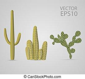 vecteur, ensemble, cactus