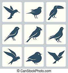 vecteur, ensemble, oiseaux, icône