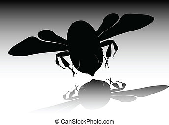 vecteur, noir, illustration, abeille