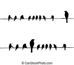 vecteur, silhouettes, fil, oiseaux