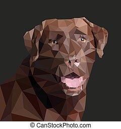 vecteur, style, brun, labrador, low-poly., illustration