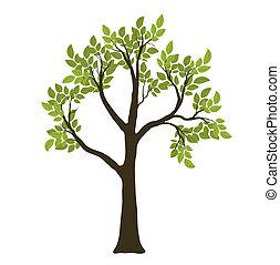 vecteur, symbole, arbre., vert, nature