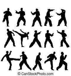 vecteur, -, taekwondo-fighter