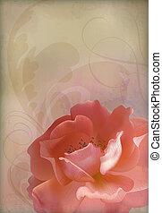 vecteur, vieux, vendange, textured, papier, fond, rose