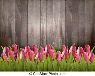 vector., nature, bois, tulipes, signe., fond, printemps, rouges