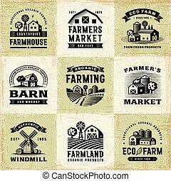 vendange, étiquettes, ensemble, agriculture organique