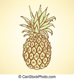 vendange, croquis, savoureux, style, ananas