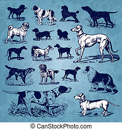 vendange, ensemble, chiens, (vector)