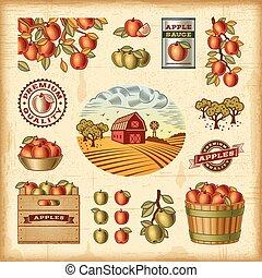 vendange, ensemble, récolte, pomme, coloré