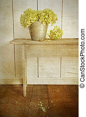 vendange, hortensia, fleurs, âge, regard