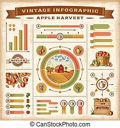 vendange, infographic, récolte, pomme