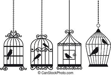 vendange, oiseaux, cages oiseaux