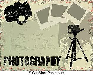 vendange, photographie, affiche