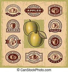 vendange, timbres, ensemble, pomme