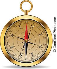 vendange, vecteur, compas