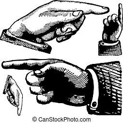 vendange, vecteur, doigts, pointage