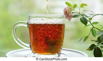 verre, framboise, feuilles, dehors, cup.tea, verser, groseille, thé, menthe, citron, fête, baume