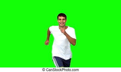 vert, écran, jogging, gai, homme