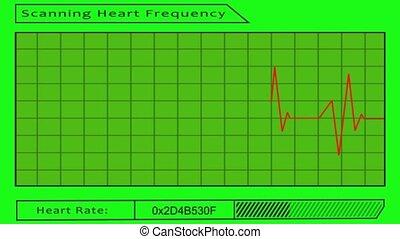 vert, -, coeur, écran, balayage, fréquence