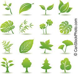 vert, ensemble, feuille, icônes