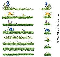 vert, ensemble, fleurs, herbe
