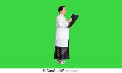 vert, femme, radiologue, écran, personne agee, examiner, key., cerveau, chroma, balayage, mri