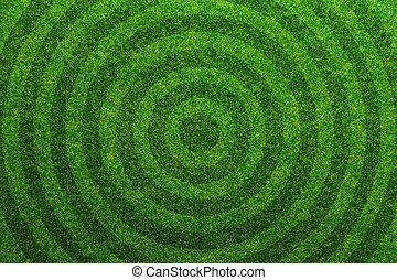 vert, football, herbe, fond, champ