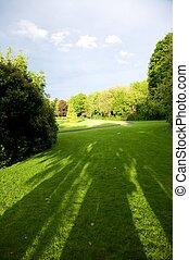 vert, irlandais, parc