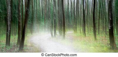 vert, luxuriant, forêt, par, sentier