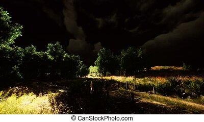 vert, orage, pré, éclair, nuages