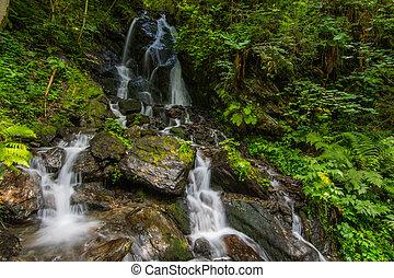 vert, peu, chutes d'eau, forêt