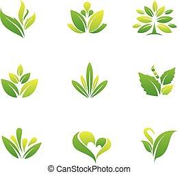 vert, symbole, arbre, nature