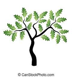 vert, vecteur, chêne, jeune, arbre